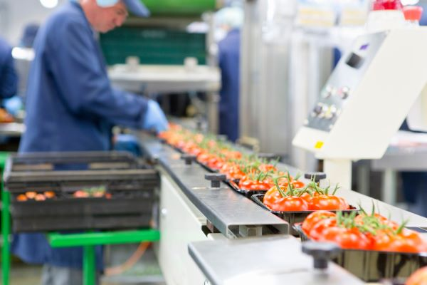 Food Processing Worker